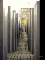 Monumento holocausto judio (MONCHO REY) Tags: viaje vacation berlin monument germany holocaust holidays pentax monumento alemania jewish labyrinth vacaciones judo berln laberinto holocausto k20d monchorey monarq78 xudeu xudo