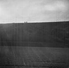 Painted Land (Jason Lupi) Tags: bw tree 120 film lines rural mediumformat square landscape toy sussex holga 120film marks plastic 400 analogue southdowns sussexdowns oldfilm outofdatefilm bergger 2lovers southdownsnationalpark