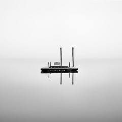 Lake Quinalt - Morning Still (Luke Austin) Tags: blackandwhite bw usa square blog washington still calm minimal olympicnationalpark lukeaustin