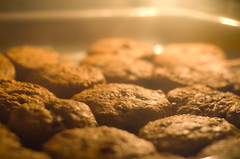 Anticipation (5/52) (Jeremy Jason Tan) Tags: cookies 50mm baking nikon cookie oven bokeh oatmeal nikkor dslr bake raisin nikkor50mmf18d afd50mmf18 d7000 nikond7000