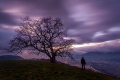 Dpart de Grenoble demain ... - Bye Grenoble ! (Mathieu Rivrin - Photographies) Tags: old city france tree night alpes grenoble nuit nocturne ville vieux rhone isre chene venon matbzh