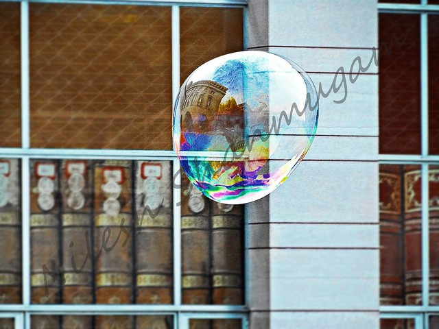 Reflection on a soap bubble