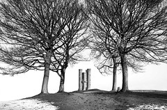 Trees-and-Folly (petefoto) Tags: longexposure trees winter blackandwhite snow landscape broadway atmosphere cotswolds wilderness filters folly broadwaytower nikond700 gnd09s leefilters09sgrad