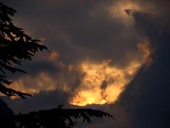 here comes the sun (overthemoon) Tags: morning winter sun cold tree clouds sunrise grey schweiz switzerland suisse svizzera vevey vaud romandie imagepoésie