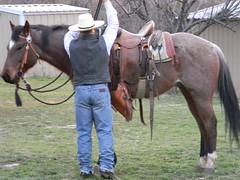 www.Cowboy4Sale.com (tanyerhide) Tags: show horses horse leather shop kids washington cowboy mare texas forsale country jet gear cash trail riding prca dash longhorns breeding cutting playboy rides freckles safe easy cowgirl calf halter chaps pleasure stud impressive saddle peppy buckaroo beginner tack buckskin advanced rawhide pepto bridle vaquero shaps sorrel bred blueroan chinks bosal hobbles redroan saddlebags headstall bayroan kidclu wwwcowboy4salecom ropetiedown studarmitas customwwwcowboy4salecom