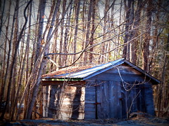 4.10.14: Falling Down (Ruff Edge Design) Tags: decay barns maine lomoish