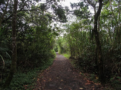 "Parc National Arenal <a style=""margin-left:10px; font-size:0.8em;"" href=""http://www.flickr.com/photos/127723101@N04/26295822063/"" target=""_blank"">@flickr</a>"
