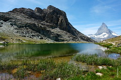 das Matterhorn und Riffelsee (welenna) Tags: blue schnee summer sky mountain snow mountains alps water switzerland see wasser swiss blumen berge matterhorn riffelsee alpen blume wallis wasserspiegel schwitzerland