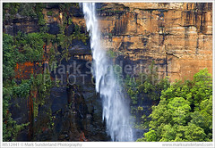 Fitzroy Falls Southern Highlands ( Mark Sunderland www.marksunderland.com) Tags: travel cliff green rock landscape waterfall nationalpark spring australia falls rockface foliage newsouthwales touristattraction morton kangaroovalley southernhighlands fitzroyfalls cascase