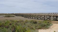 Ria Formosa, Faro, Algarve, Portugal - May 2016 (Keith.William.Rapley) Tags: portugal faro nationalpark algarve woodenbridge riaformosa woodenwalkway keithwilliamrapley
