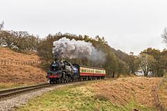 Branch Working (4486Merlin) Tags: england europe unitedkingdom transport steam northeast railways northyorkshire gbr northyorkshiremoorsrailway 63a heritagerailways moorgates exbr brstd4mt264t mattfishercharter 8012680072