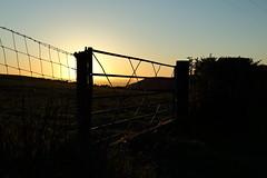 Llandegla in the Evening Light. (Mat Price) Tags: silhouette fence gate eveningsun eveningsky dpp llandegla canon1740mm cokinpolarizer canon70d