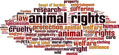 Animal rights word cloud (defendanimals2) Tags: life food cloud pets love animal illustration word hope justice clothing tag animalrights property right entertainment achievement research human solidarity peta law concept care suffering protection problems vector survival interest moral speciesism cruelty mental welfare nonhuman vulnerability examining nonhumananimals sentience abolitionist animalwelfare beastofburden personhood wordcloud animallaw moralrights moralvalue fundamentalprotection mentalcomplexity