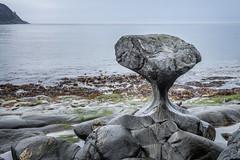 The Ocean's Sculpture (Richard Davy - The World As I See It) Tags: norway kannesteinen oppedal måløy vågsøy rock rocks cliffs ocean sea water headlands outdoor landscape seascape seaweed