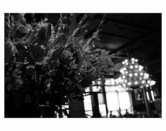 Hotel New York (bruXella & bruXellius) Tags: blackandwhite netherlands monochrome blackwhite rotterdam hotelnewyork paysbas niederlande leicax1
