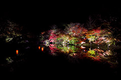 SDIM5090 (JIN X3) Tags: autumn reflection sigma foveon dp1x