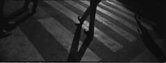 (sinetsin) Tags: barcelona street film photography kodak trix stock d76 hasselblad 400 pushed 800 xpan solution rf rangefinders 45f4 autaut sinetsin