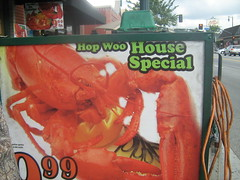 Chinatown Special (isisxosiris07) Tags: sign menu restaurant funny chinatown shrimp creepy lobster seafood