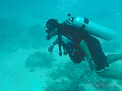 me scuba diving in Aruba (danilew) Tags: pictures november highresolution photos images aruba photographs scubadiving caribbean underwaterphotography 2011 waterrecreation danilew mangelhalto wwwdanilewcom