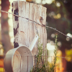 Happy Fence Friday {can't find enough pots and pans} Edition! (pixelmama) Tags: california fence post bokeh pot kettle squareformat pan potsandpans thekills hff chinesecamp whatareyoudoingthisweekend fencefriday 16daycaliforniasafari takingdownfalldecorationstoday puttingupchristmasdecorations wehadourfirstsnowlastnight