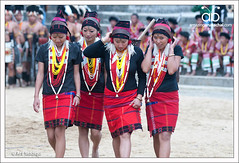 Hornbill Festival 2011, Kohima, Nagaland (Arif Siddiqui) Tags: travel people india heritage tourism festival asia culture traditions places tribal tribes ethnic northeast hornbill customs naga arif nagaland dances siddiqui hornbillfestival