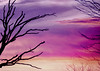 High Hopes (pixelmama) Tags: pink orange tree sunrise purple branches silhouettes pinkfloyd glomp ♥ colorsoflife highhopes foreverandever ofhope chasinglight withfriendssurrounded foraurelia pixelmama theateamrallyingforaurelia auroraillinios thelightwasbrigher thetastewassweeter {{hugs}}