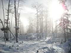 Sandberg (simo2582) Tags: park trip travel schnee winter wild panorama mountain lake snow alps travelling ice nature beauty reflections walking landscape lago austria mirror see frozen reflex sterreich reisen europa europe frost view im natural hiking nowhere htte eu peak berge climbing vegetation alm wilderness alpen sandberg riflessi alpi blick obersterreich luce kleiner austrian reise specchio hutte grunau spitze wels alpino alpenverein almtal grnau schermberg welser sektion dsee sterreichischer almtalerhaus av