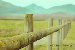 Y empieza el invierno ..... (Maril Irimia) Tags: winter mountains musgo texture textura field moss nikon niceshot textures campo invierno texturas montaas pasteltones softtones fieldsite parajecampestre tonospastel winterfence tatot tonossuaves workingwithtextures mygearandme marilirimiafotografa valladeinvierno trabajarcontexturas marilirimia