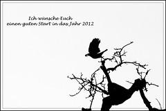 Start (Lumitax) Tags: start sw baum vogel neujahrswnsche vivitar100500