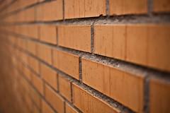 Brick wall (Hkan Dahlstrm) Tags: orange brick wall skne sweden creative commons cc f28 skane 2011 ramlsa ef50mmf25compactmacro canoneos5dmarkii ramlosa sek