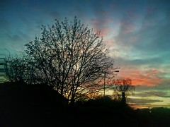 Sky on Christmas eve (Мaistora) Tags: christmas eve uk pink blue trees houses winter light sunset red england sky orange color colour tree lamp weather silhouette yellow mobile backlight clouds upload grey reading evening colorful day afternoon phone purple post cloudy britain dusk bare branches sony sonyericsson cellphone lamppost filter colourful process upstream berkshire effect postprocess android contrejour edit enhance x10 postsunset charvil maistora shortdays xperia yahoo:yourpictures=weather picay ilobsterit