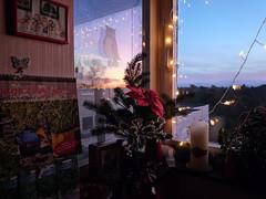 64688 Bilder aus einer grossen Stadt, (golli43) Tags: winter sunset streets heaven advent himmel wolken dezember neighbours katzen nachbarn homesweethome weihnacht spaziergnge perser nahverkehr streetlive weihnachtsbume krisenjahr