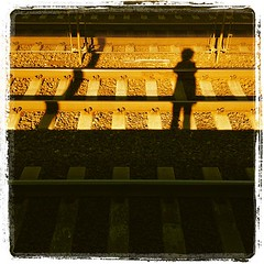Fro on the tracks. #ignation #train (jaredpolin) Tags: square squareformat lordkelvin iphoneography instagramapp uploaded:by=instagram