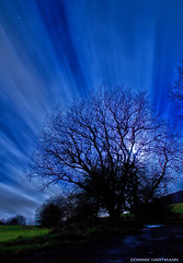 Mondschein (Dominik Hartmann) Tags: sky moon tree night clouds germany nacht himmel wolken nrw moonlight baum sauerland mondschein bestwig nuttlar