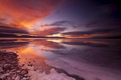 First Rays_DSC9651 (antelope reflection) Tags: lake mountains color ice beach sunrise utah antelopeisland greatsaltlake nikond90