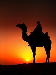 india rajasthan (peo pea) Tags: sunset india dune tar rajasthan deserto sabbia cammello rajsthan colorphotoaward thebestofday gnneniyisi mygearandme