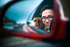 Noodles and Me (TGKW) Tags: camera boy portrait people dog man reflection car self puppy mirror nikon wing hound basset noodles ayr 7096