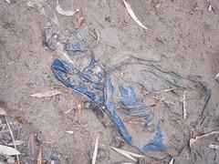 DSCN5122 (jsnjw2) Tags: rotting graveyard nylonjacket muddyjackets jacketsabandoned jacketstarshed jacketsrotting coatsabondoned coatstrashed nylonrotting