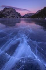 Walking on Ice (Willie Huang Photo) Tags: winter sunset lake nature landscape frozen nationalpark merced yosemite yosemitenationalpark tenayalake tiogapass tioga tenaya scenice