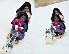Mushing back home (* H e i d i ^ _ ^) Tags: winter sonali dogs starbucks mushing 2012 americangirl 2011 cariole