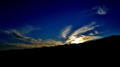 bird (arenaojeda) Tags: azul atardecer ave cielo nuves pjaro
