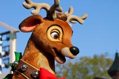 A Christmas Fantasy (heytherejere) Tags: reindeer dancers disneyland disney parade disneycastmembers disneyparks achristmasfantasy santasfinale