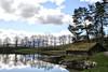 On reflection.... (larigan.) Tags: trees sea reflections inlet boathouse naust turfedroof sunnmørsalpene propertyreleased larigan borgundgavlen phamilton sunnmørealps licensedwithgettyimages ginordicjan12