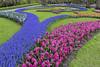 Keukenhof Flowers (Glenn Shoemake) Tags: holland keukenhof canonef1635f28lii
