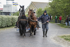 2016-Ameland019 (Trudy Lamers) Tags: wadden ameland eiland paarden reddingsboot reddingsactie