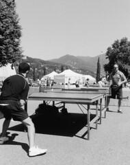 Sport Paralimpici a Como (sirio174 (anche su Lomography)) Tags: como sport pingpong tabletennis giardini inail tennisdatavolo giardinialago dimostrazionepubblica sportparalmoci