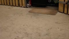 dirty feet - indoor 520 (dirtyfeet6811) Tags: feet barefoot soles dirtyfeet dirtysoles blacksoles