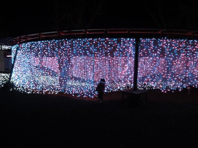 さがみ湖イルミリオン光の銀世界の入口に到着の写真