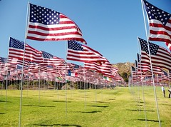Let Freedom Ring (O.LeeAnn Photography) Tags: freedom hill 911 flags malibu soldiers pepperdine