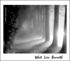 What Lies Beneath ... (Far & Away (On assigment, mostly off)) Tags: light shadow fog path mistery dense 100commentgroup
